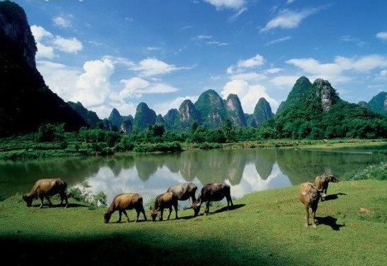 10 Days Dream China Discovery Tour