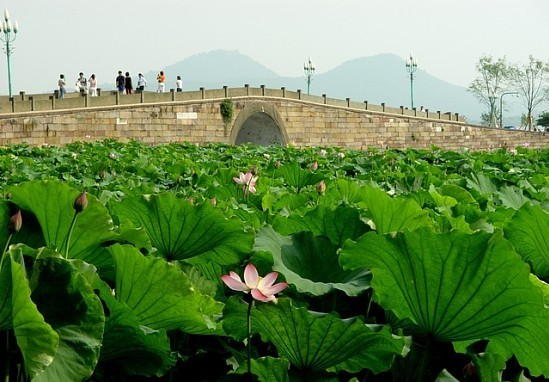 West Lake, Hangzhou Tours, Zhejiang Tours, China Tours