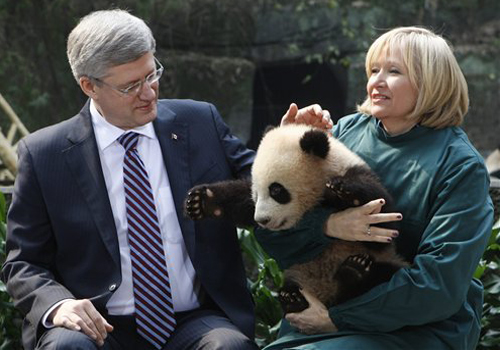 The prime minister of Canada attended the signing ceremony of renting a panda in the Panda Room of Chongqing Zoo.