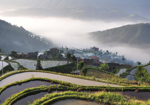 Beautiful sea of clouds scenery in China's Guizhou