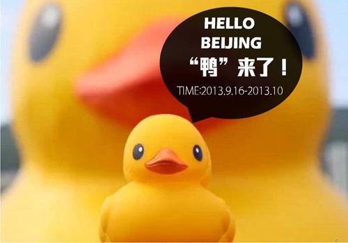 Rubber Duck coming soon--September 16th in Beijing