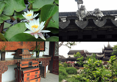 Lotus,architecture and the Suzhou garden style buildings.