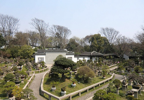 A garden for plenty of exquisite bonsais in Tiger Hill,Suzhou