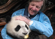Our guest hoding the panda at Chengdu